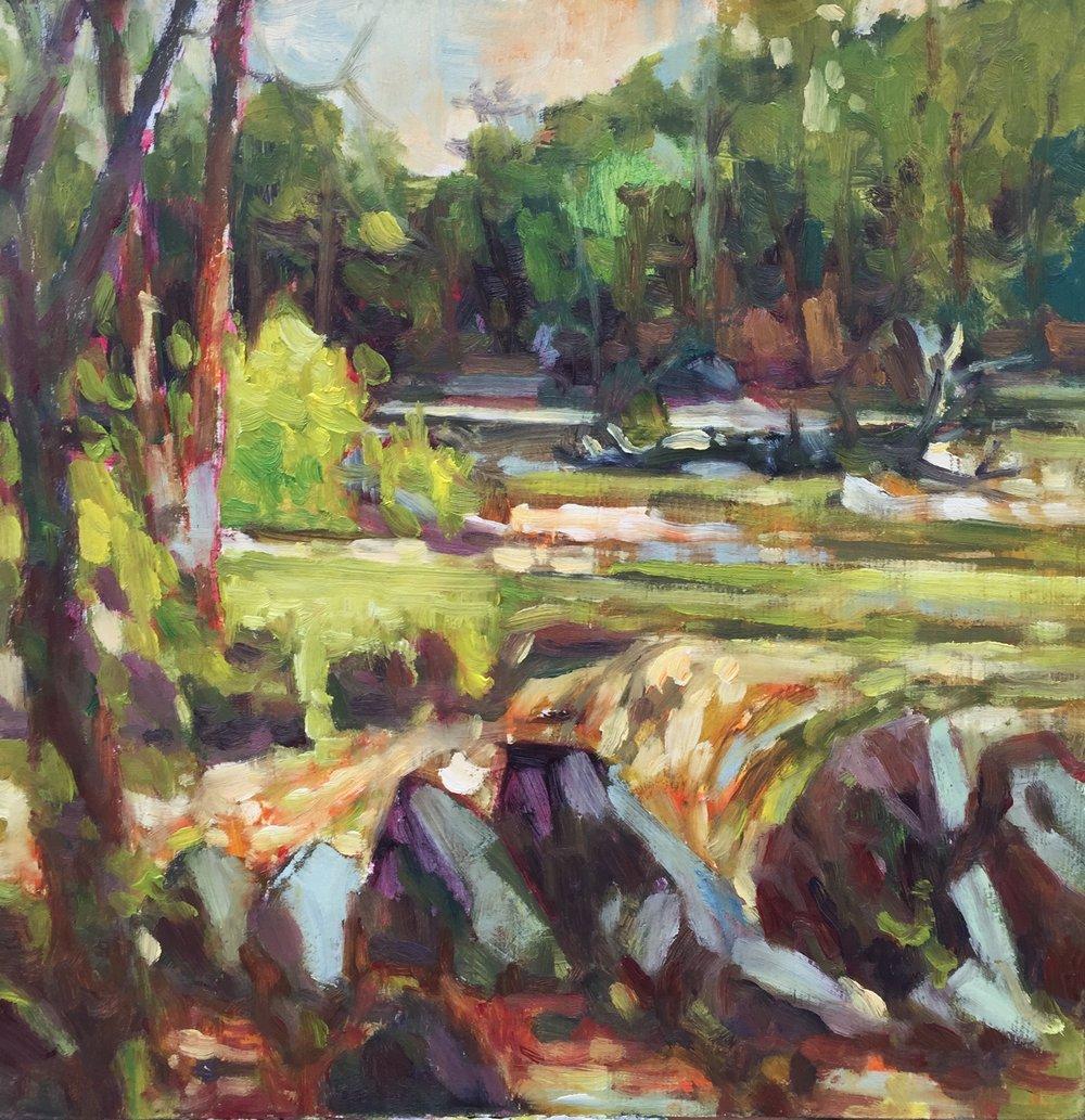 Packer's Fall in Spring, oil, 12 x 12