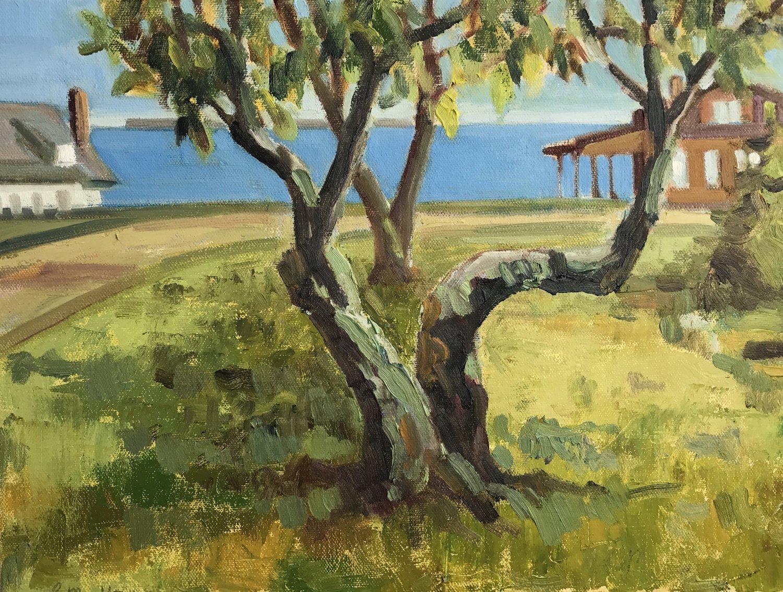 Apple Eye on Rye, oils, 16 x 20