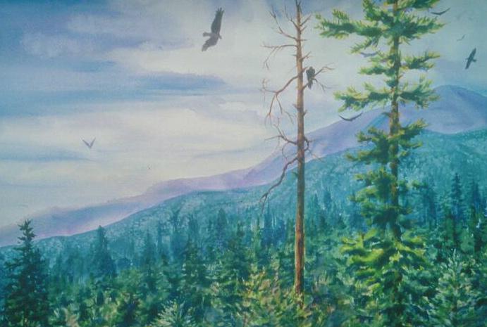 Birds of Prey, watercolor, 18 x 24