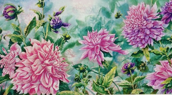 Dahlia Delight, watercolor, 16 x 24