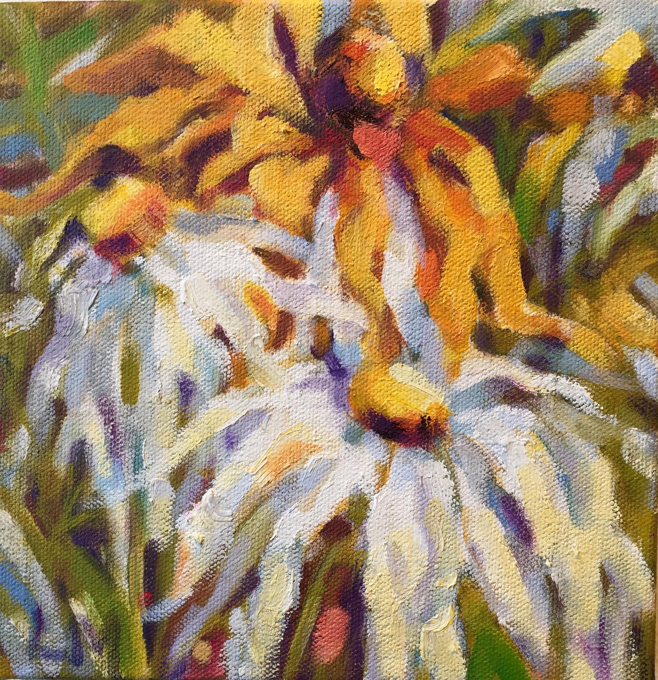 Daisies, oils, 8 x8