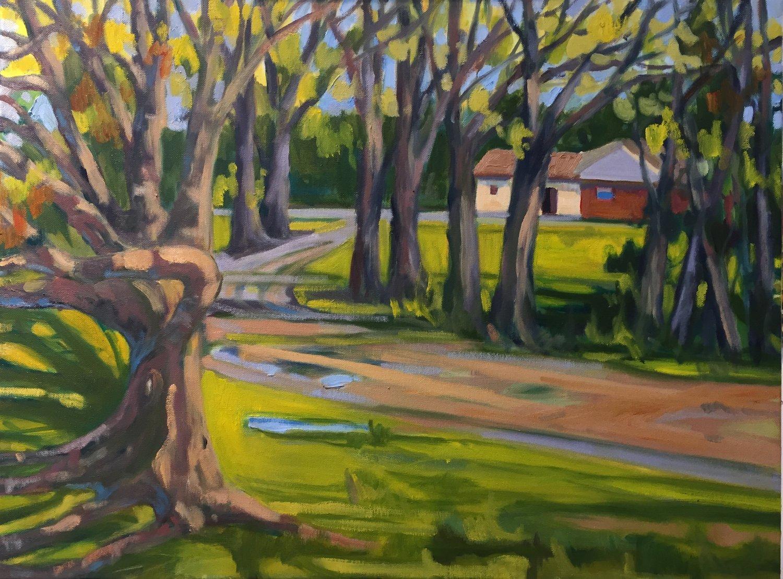 McDerritt Hill Farm, oil, 18 x 24