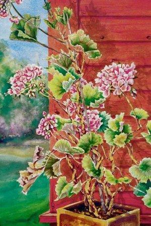 Geraniums' Corner, watercolor, 16 x 24