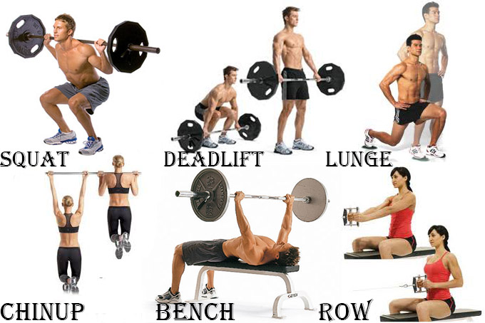 THESE ARE ' BANG FOR YOU BUCK EXERCISES '.  Stick to these!