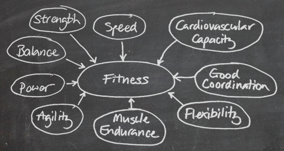 Some potential qualities of overall fitness.