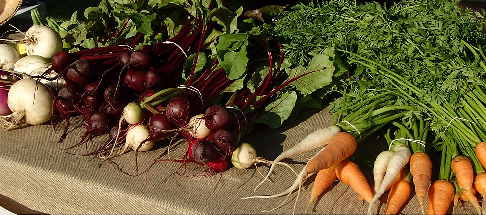 Photo from Edible Acres