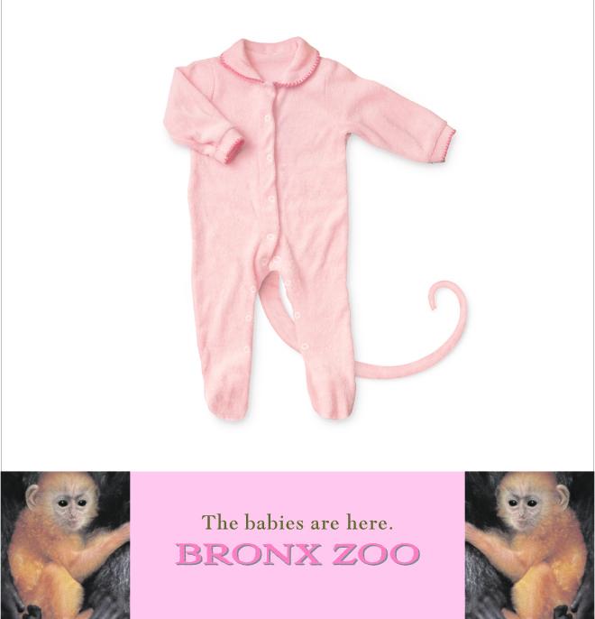"""Bronx Zoo """"Onesie"""""""