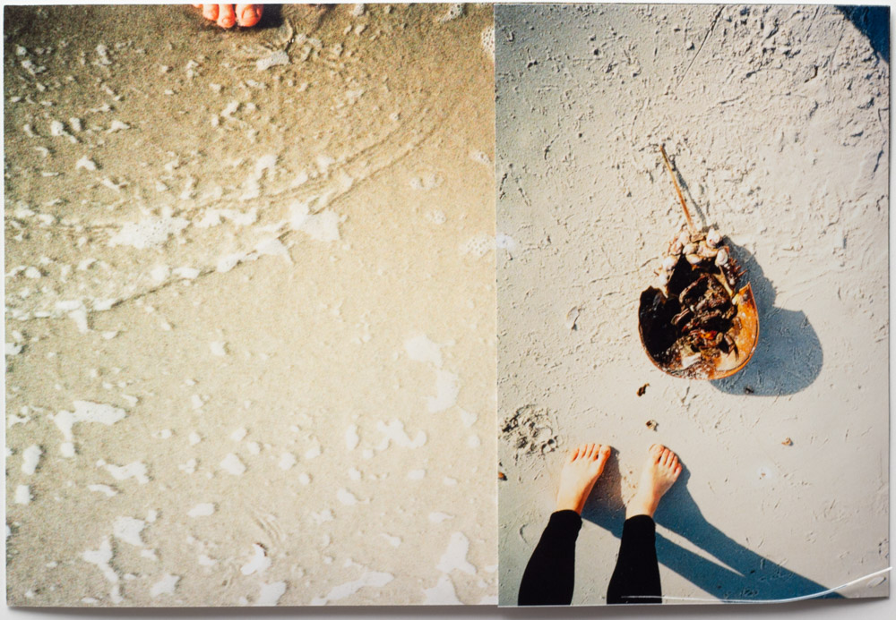 Toes and Crab