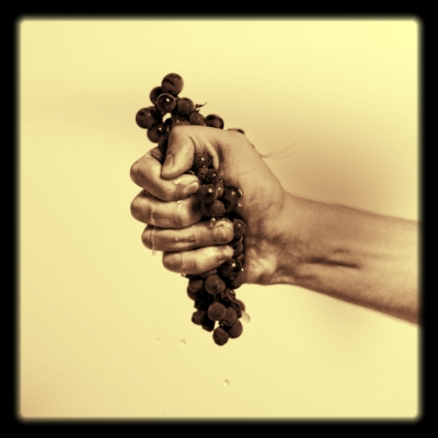 grapes in hand.jpg