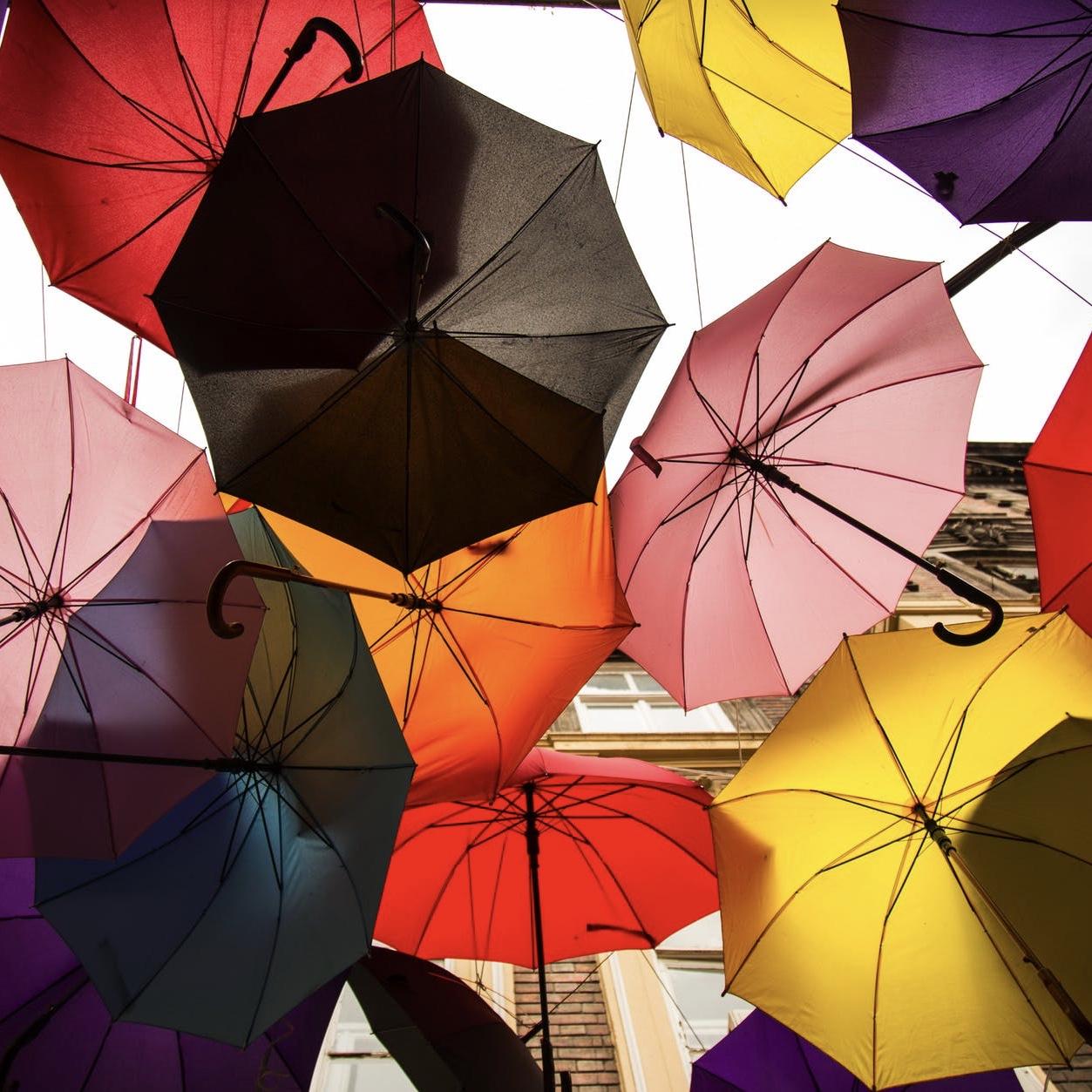 Merritt_Inspo_Color.jpg