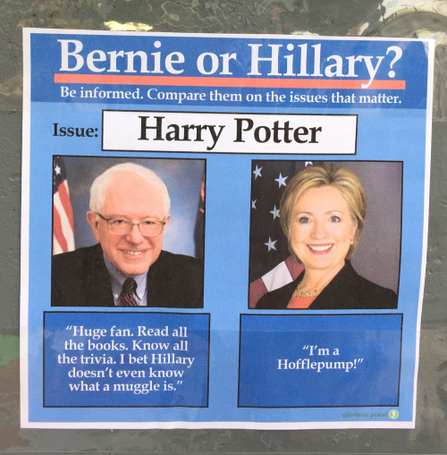 """A photograph of a flyer reading 'Bernie or Hillary? Be informed. Compare them on the issues that matter.' Photoshopped in: the issue is """"Harry Potter."""" Bernie says, """"Huge fan. Read all the books. Know all the trivia. I bet Hillary doesn't even known what a muggle is."""" Hillary says, """"I'm a Hofflepump!"""""""