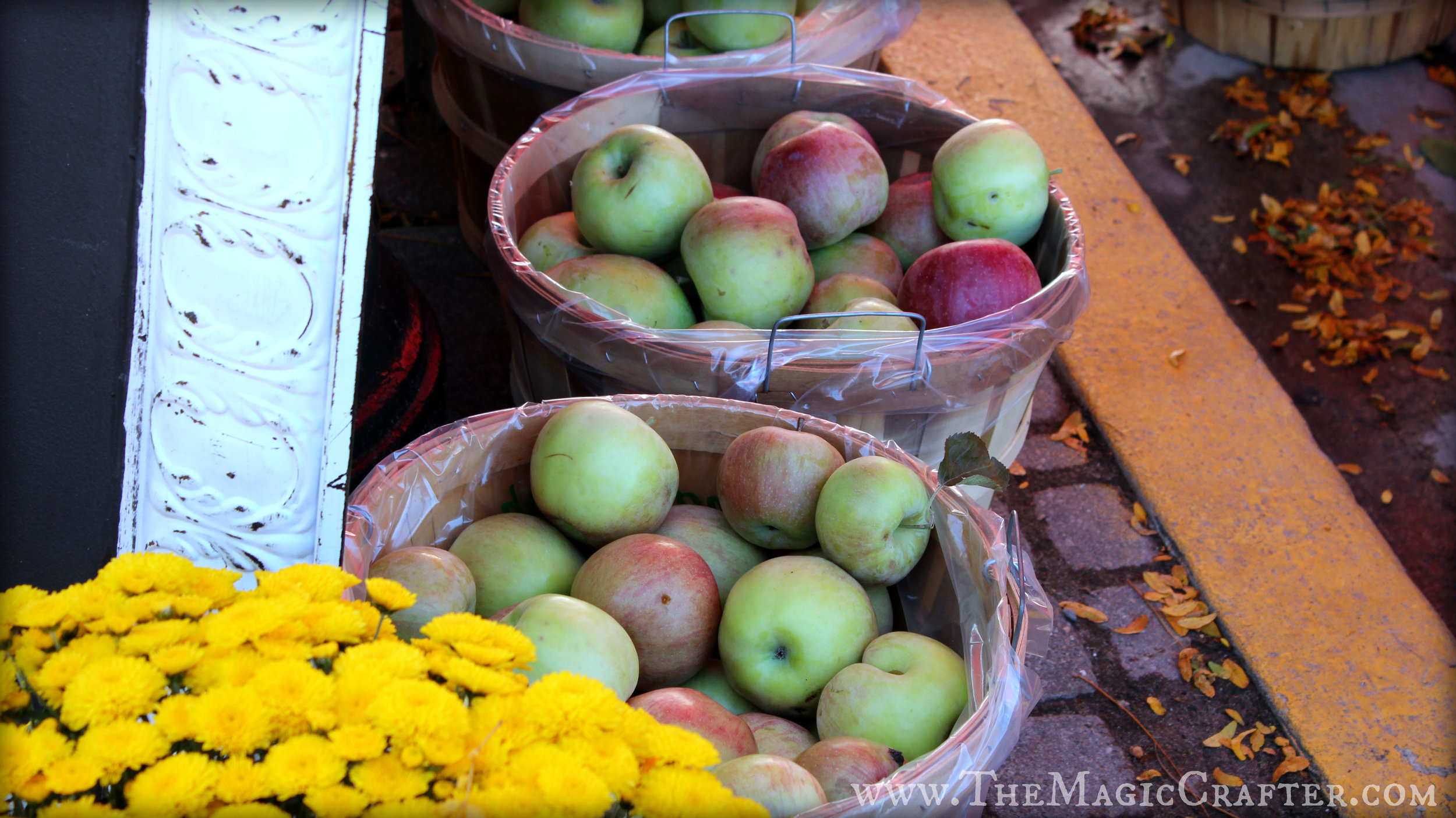 Large baskets full of apples like this seemed to fill every inch of the sidewalk in downtown Charlevoix. There were so many different types of apples to be found. Who knew one fruit could come in so many different flavors?