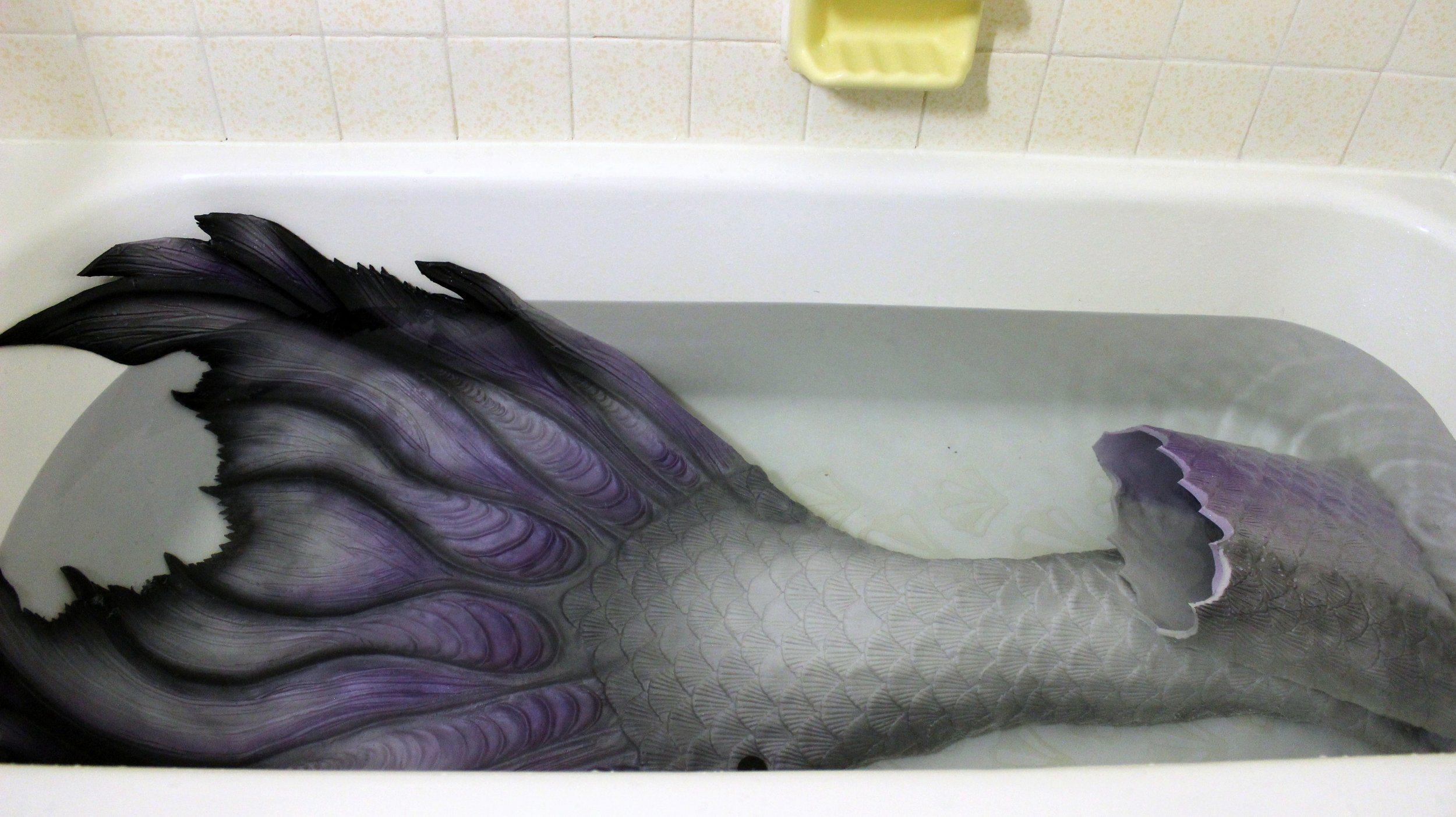 Cleaning my MerNation Silicone Mermaid Tail. Here is a picture of my hyper-realistic mermaid tail getting a bath in the bathtub! I clean my tail, Sparda, after nearly every swim and every event in order to maintain its beauty and prevent the development of mold.