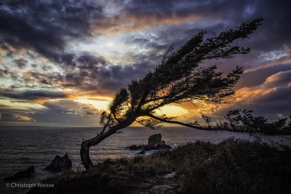 USA-Oregon-Washington-Landscape Photography_© Christoph Weisse 2017-11.jpg