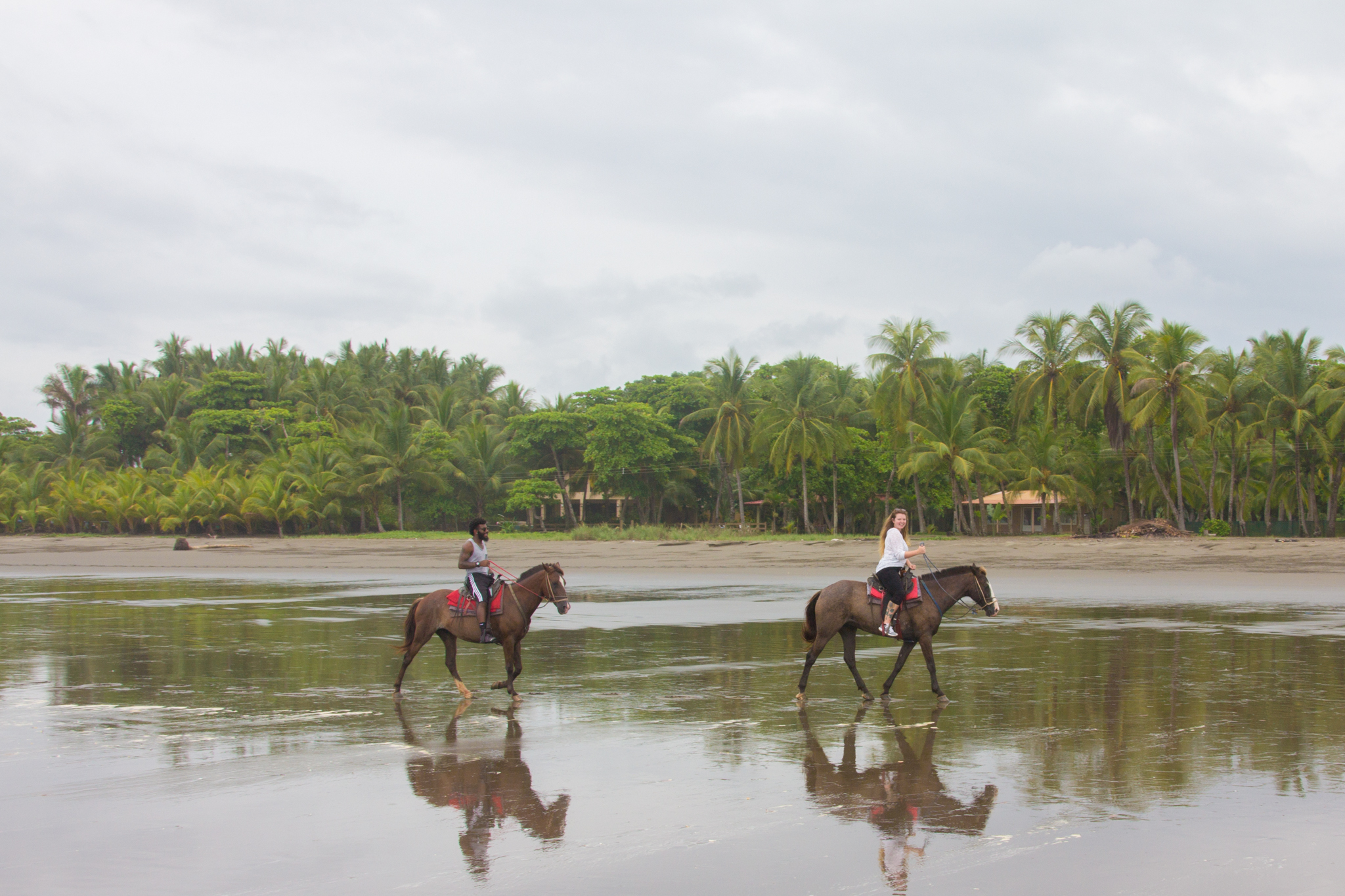 Horseback riding can be a bit pricey but there are ways to make it cheaper: Groupon, student cards, and coupon clipping all come in handy.