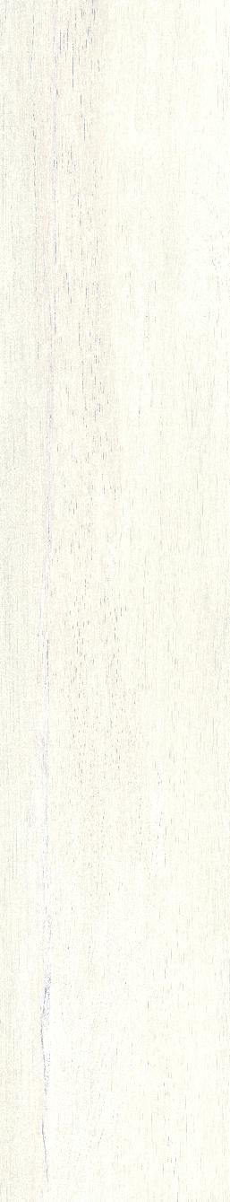PORC. P.R. 23.3X120 SECUOYA ICE