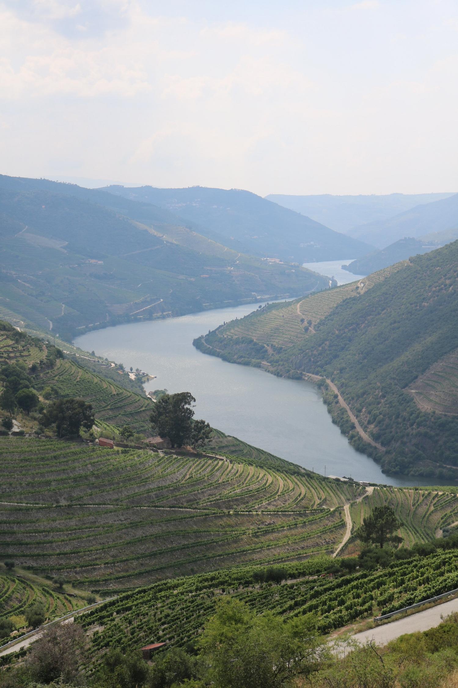 The Douro Wine Region in Northern Portugal
