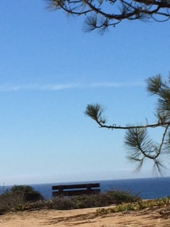 Street view bench above N Torrey Pines and Del Mar beach