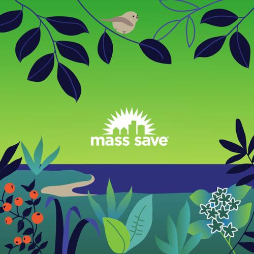 Mass Save    Mass Save Social    SEE THE WORK