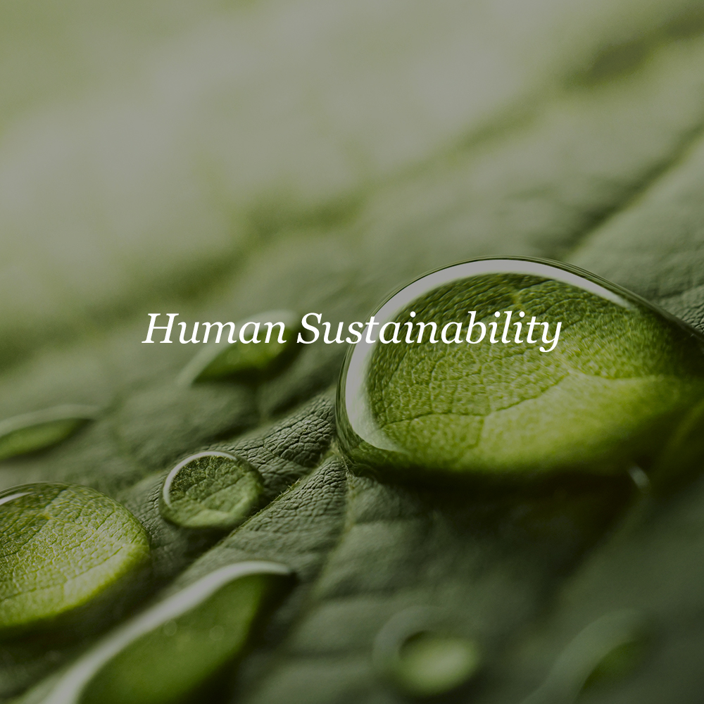 Human Sustainability    Environmental Conservation  Resource Conservation  Public Health  Education  Low Income Solutions  Sustainable CPG