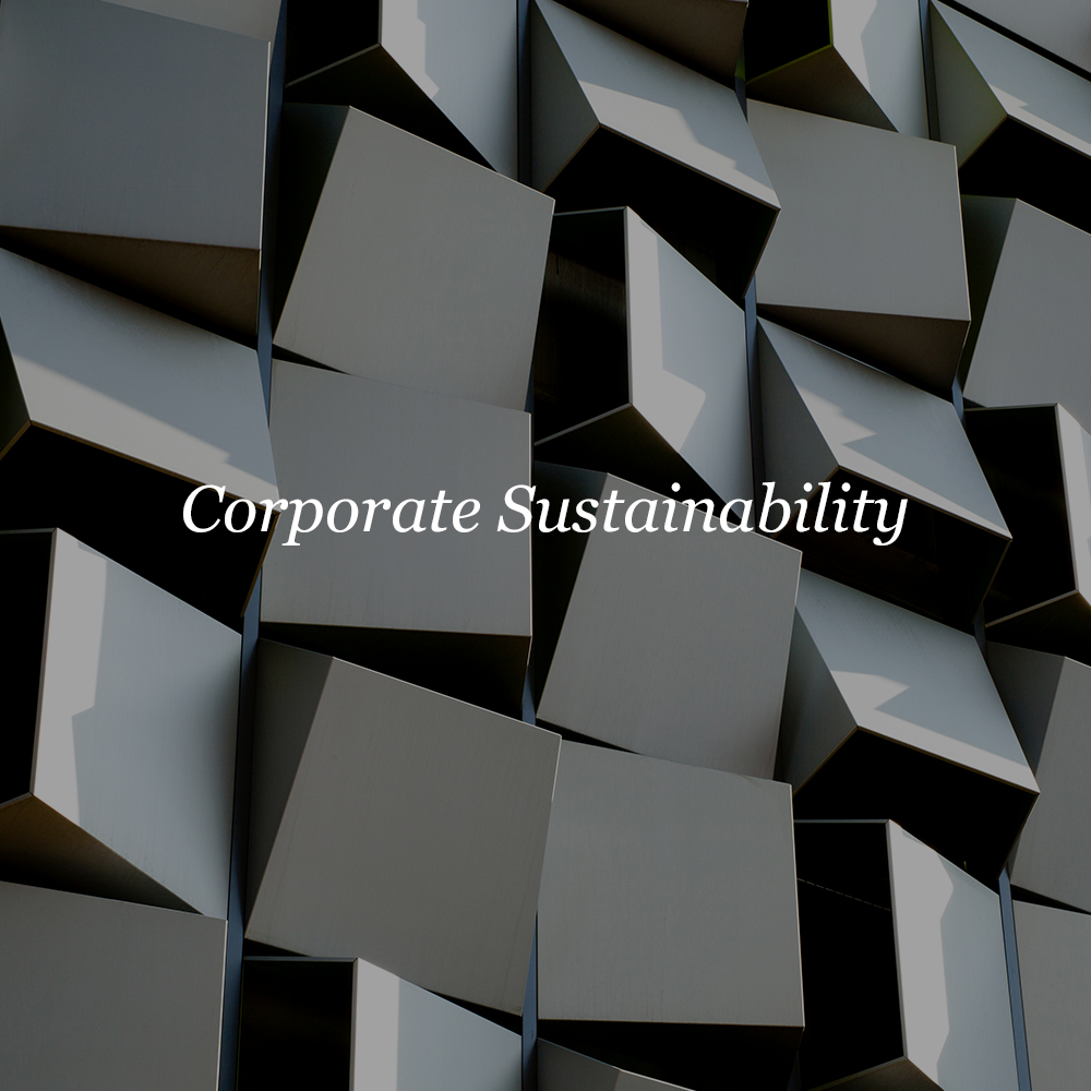 Corporate Sustainability    Sustainability Planning  Employee Communication  Stakeholder Communication