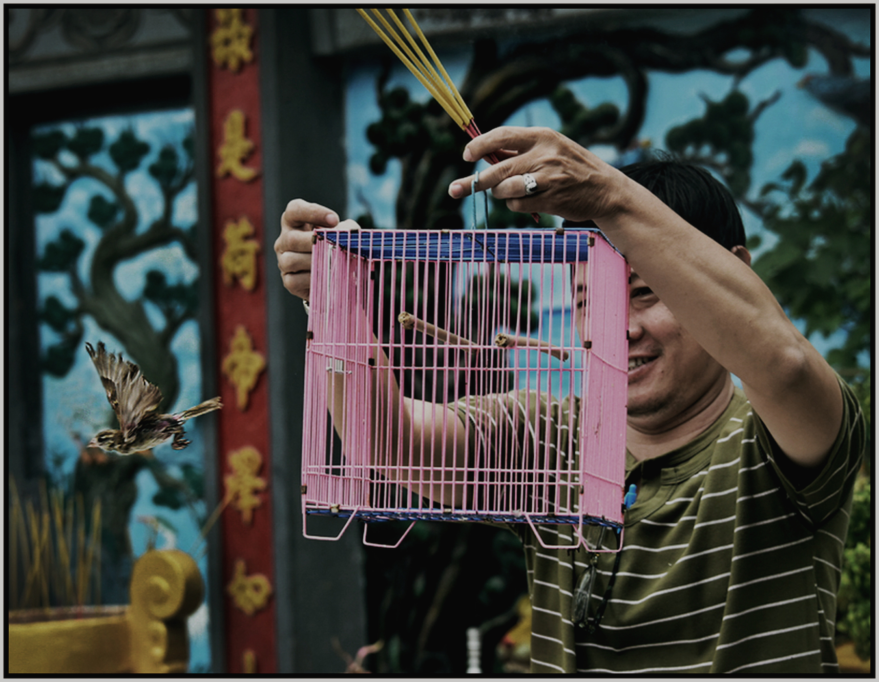 """""""Great Man"""" Buddhist Temple. A member contributes to his temple and receives several birds in a cage, which he then frees. Saigon/HCMC, Dec. 2015. #4441"""