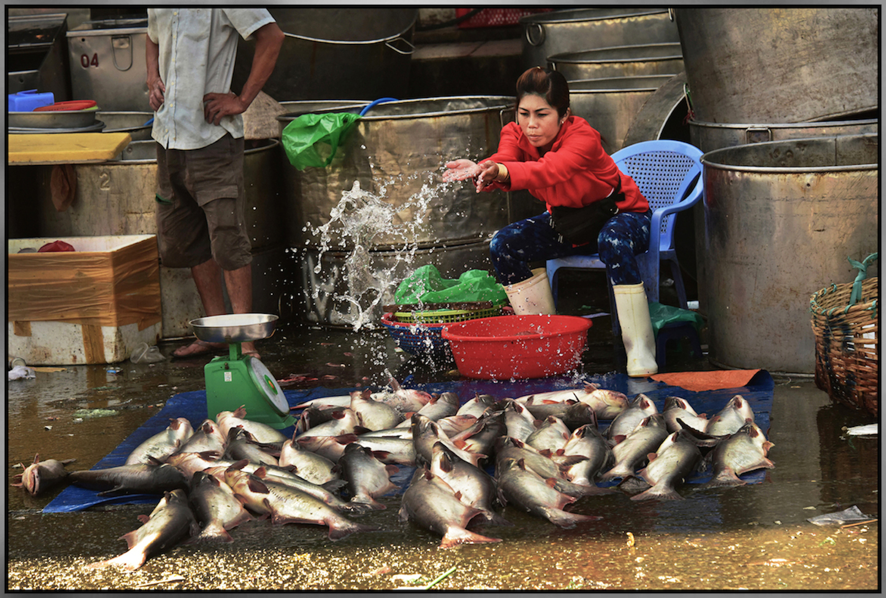 Merchant displays her fish for sale, on a hot afternoon, 105 degrees F. Binh Diem Market, Saigon/HCMC, Dec. 2015.#7814