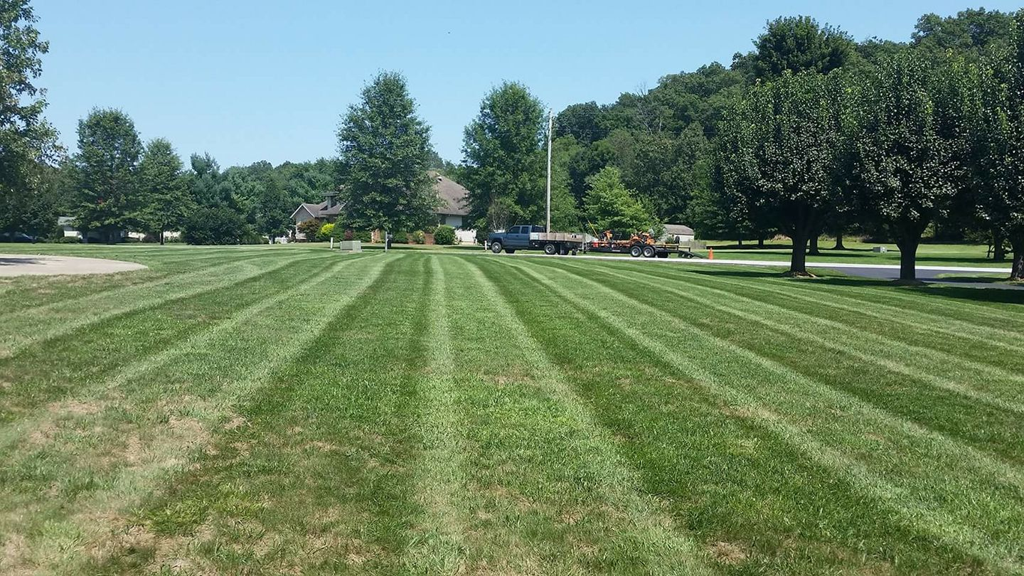 Large mowing and trimming job in Springfield
