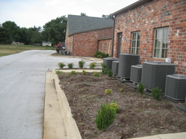 After clearing weeds, shrubs, and debris