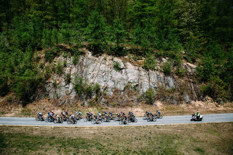 2015 Edition by Marshall Kappel