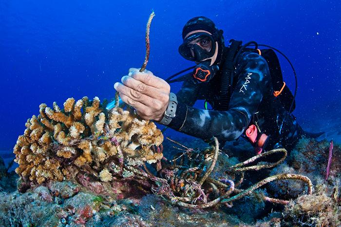 wildcoast-scuba-diver-700x467px.jpg