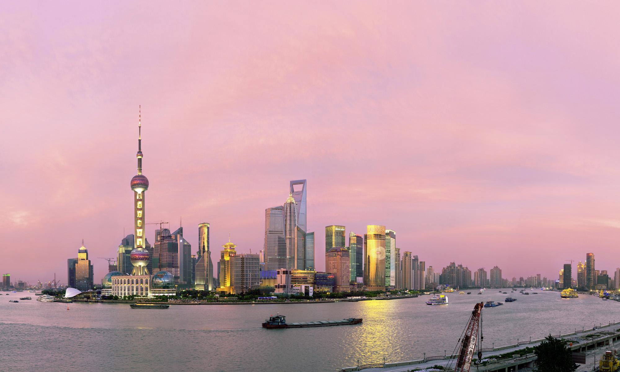 Pudong Rose - Shanghai 2009