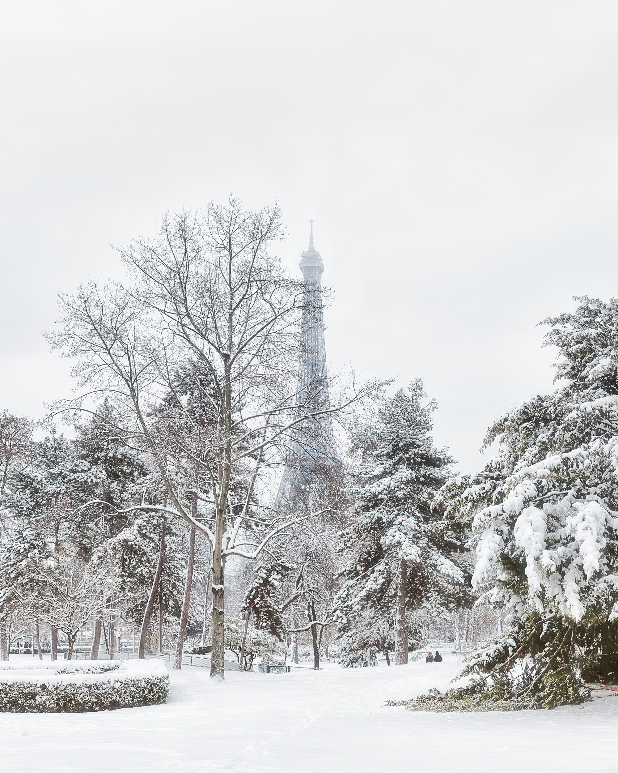 Tour Eiffel from Trocadero gardens, Winter 2018