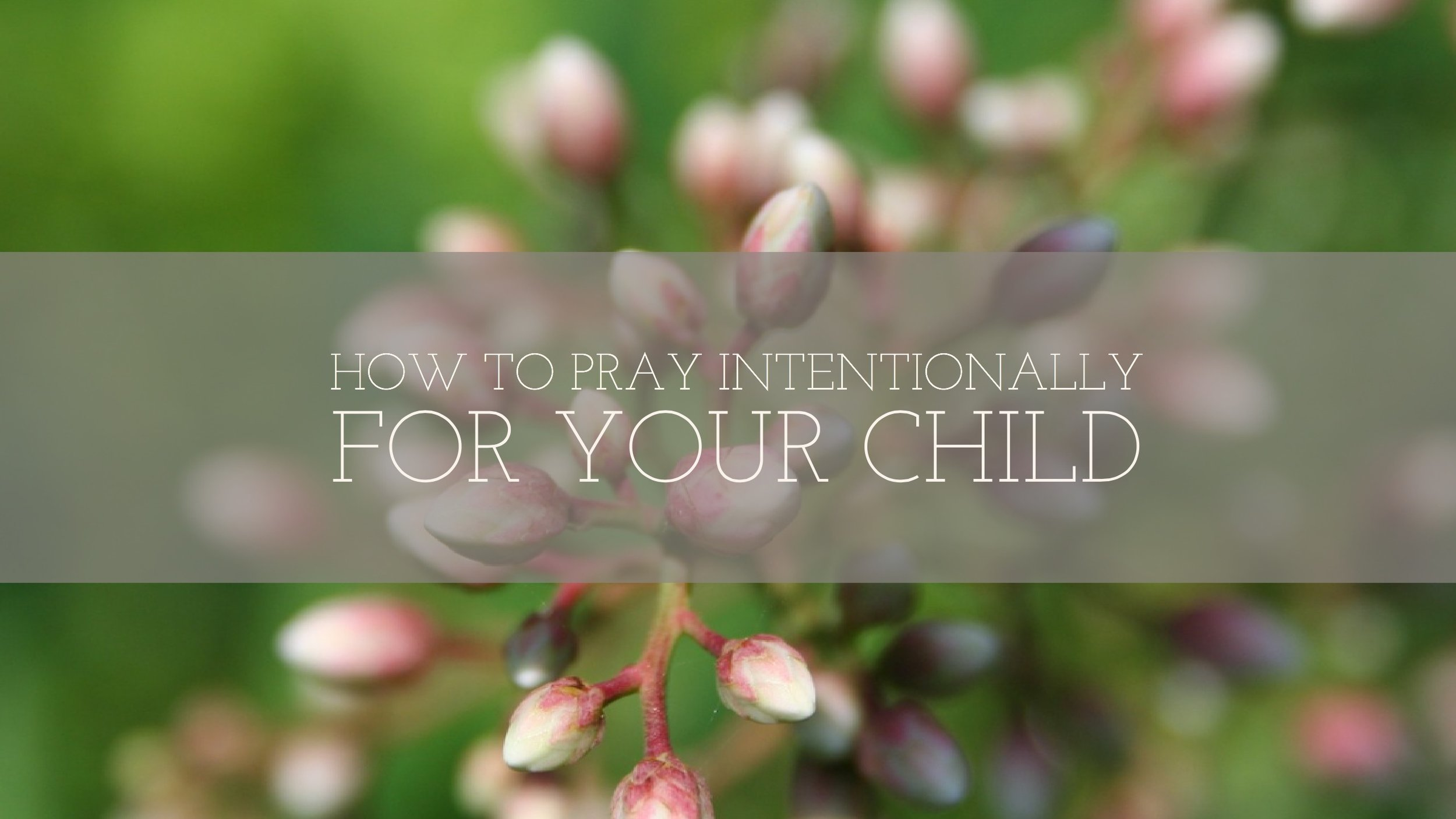 http://www.intentionalprayercards.com/praying-intentionally-for-your-child
