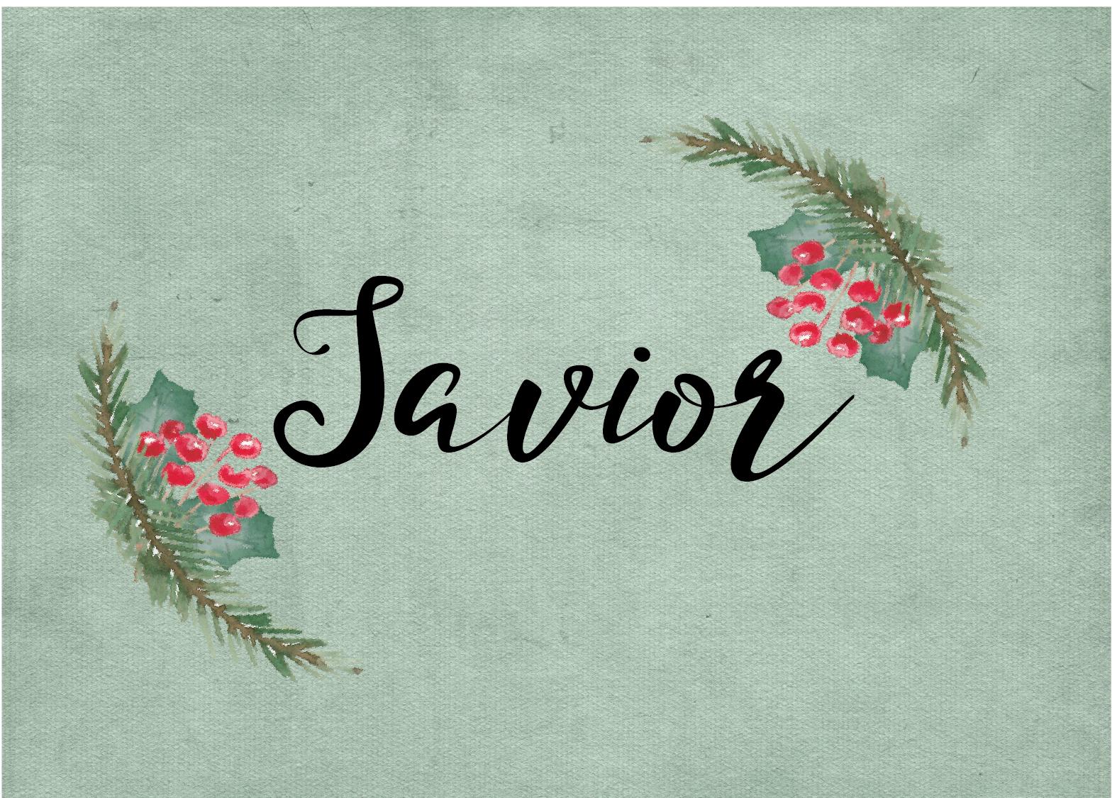 Savior-43.png