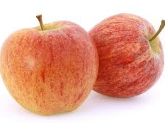 Cross Between Golden Delicious and Kidd's Orange Red