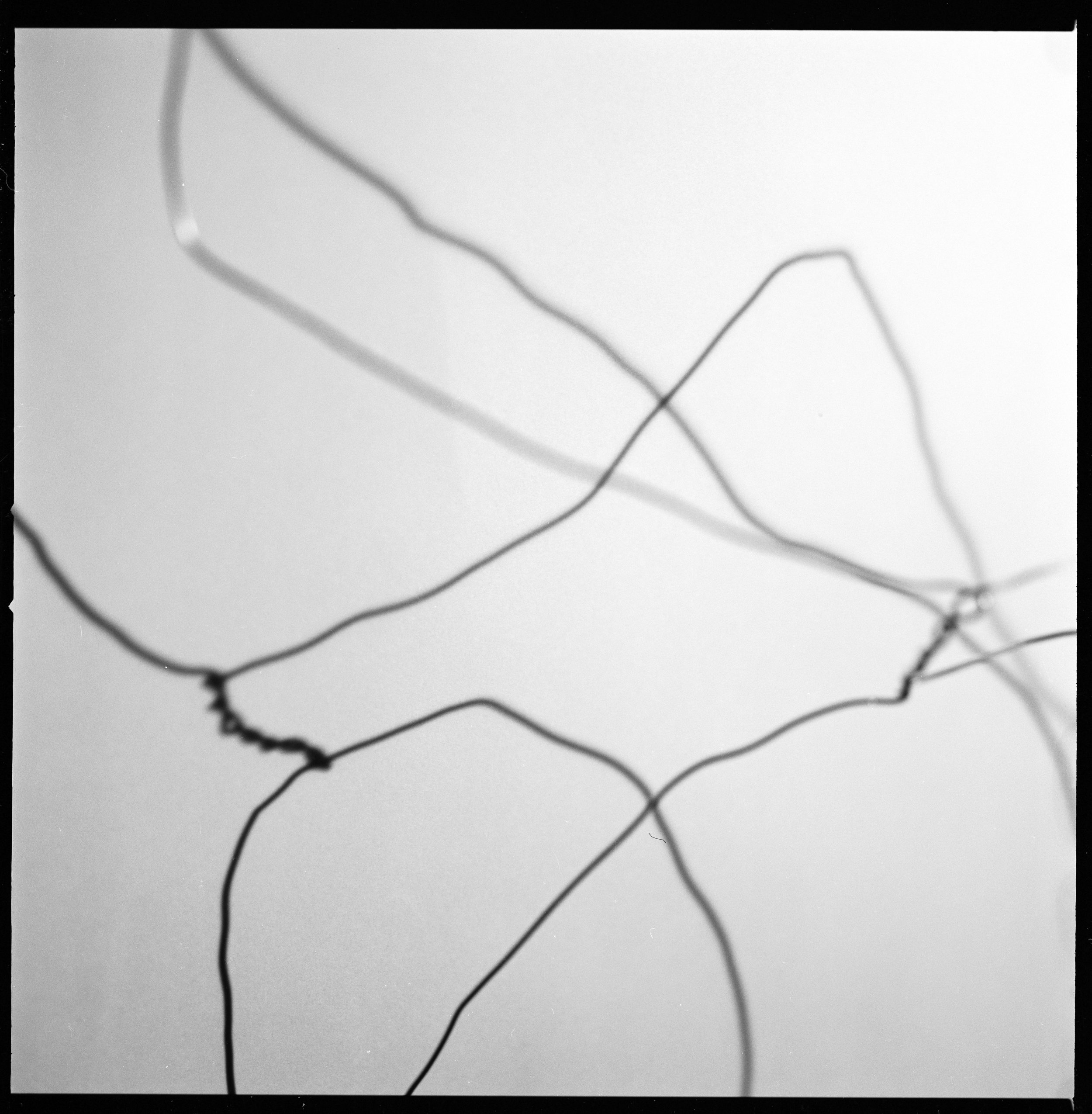 Wire Project 37.jpg