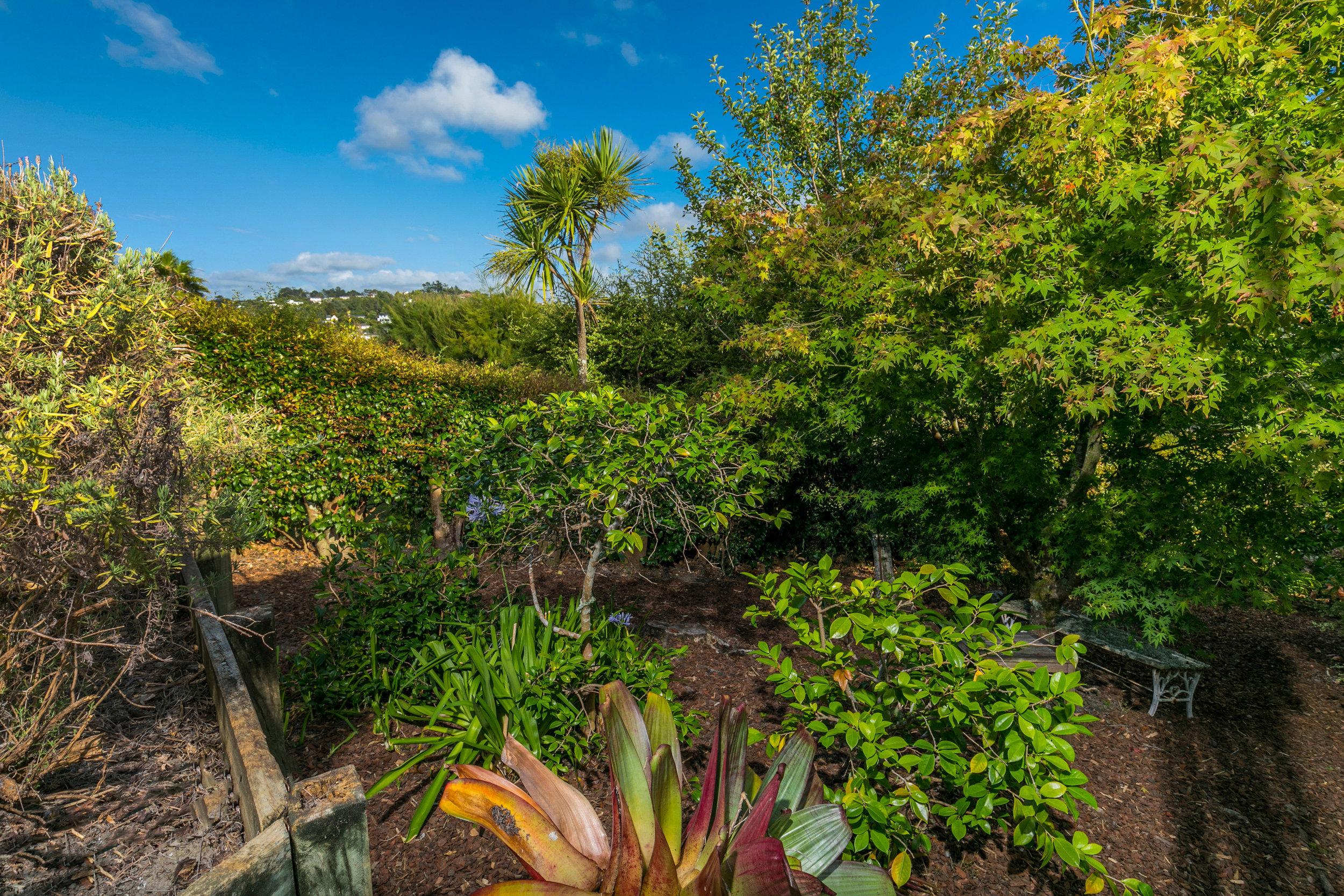 Easy care garden.jpg