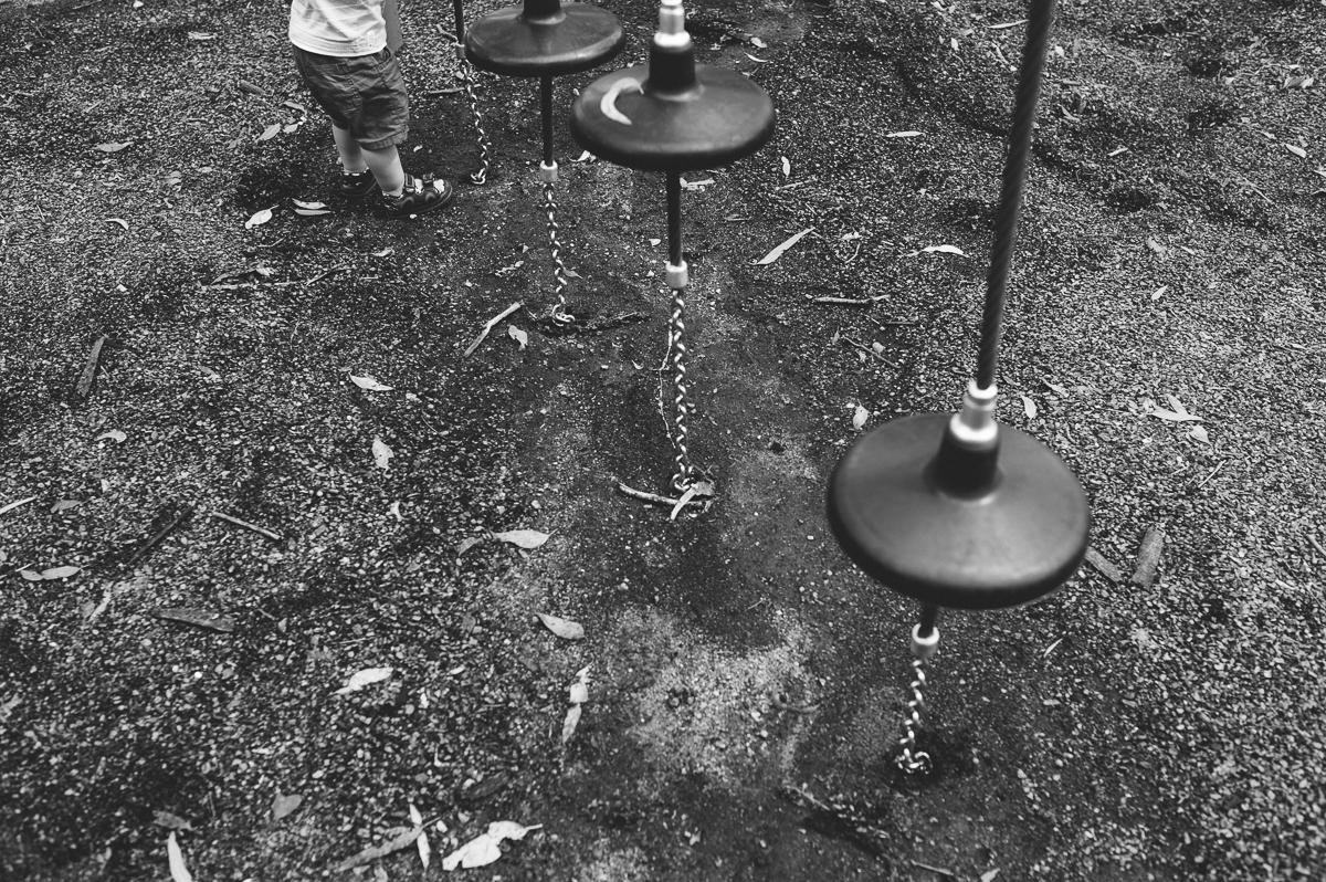 Harry in the park. VSCO/Trix