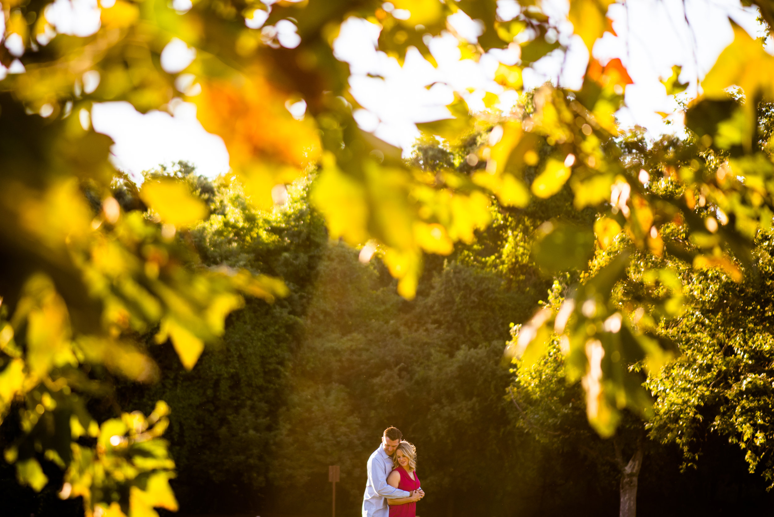 shannon-erich-006-sacramento-engagement-wedding-photographer-katherine-nicole-photography.JPG