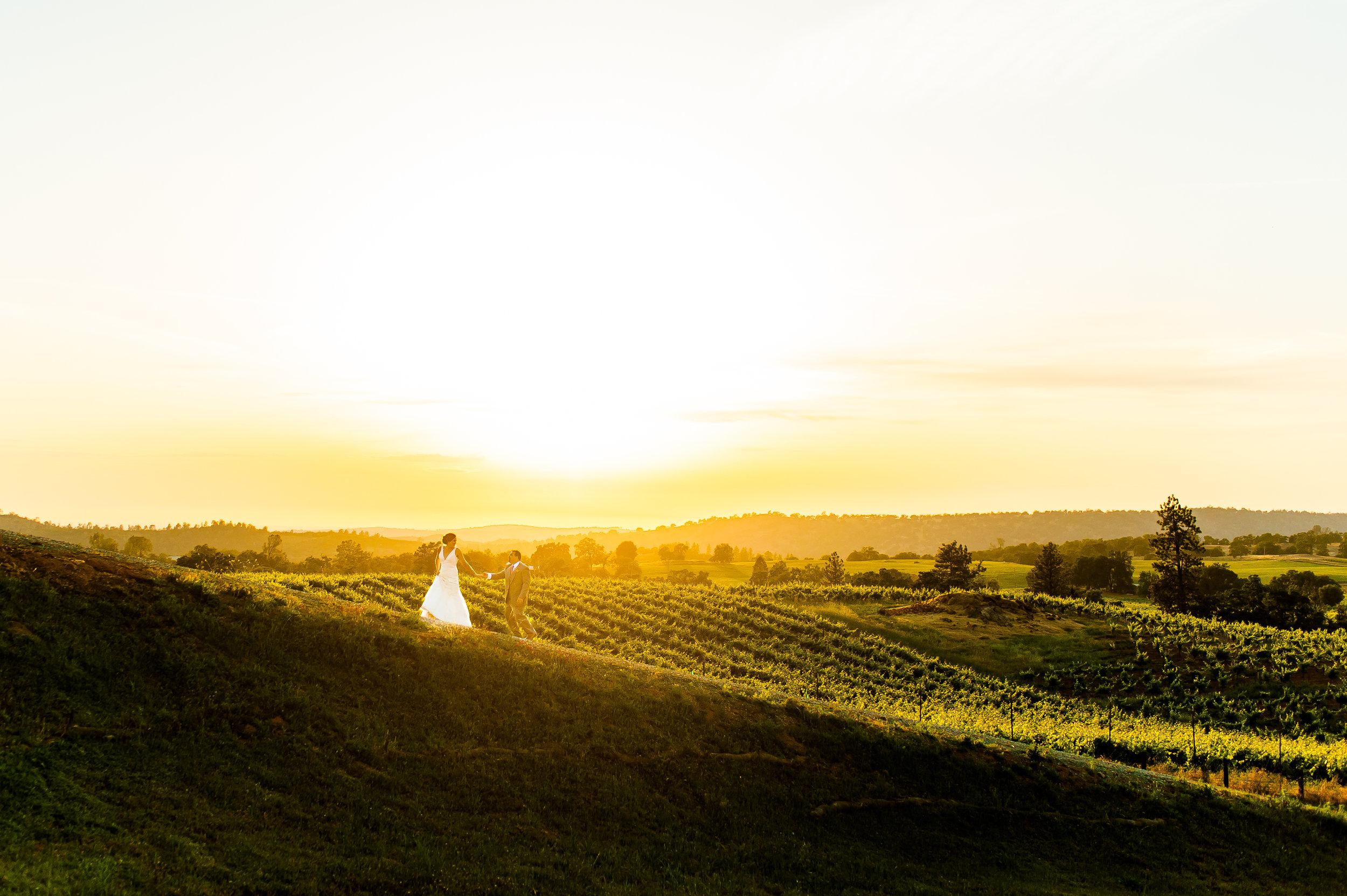 casey-sasha-001-helwig-winery-plymouth-wedding-photographer-katherine-nicole-photography.JPG