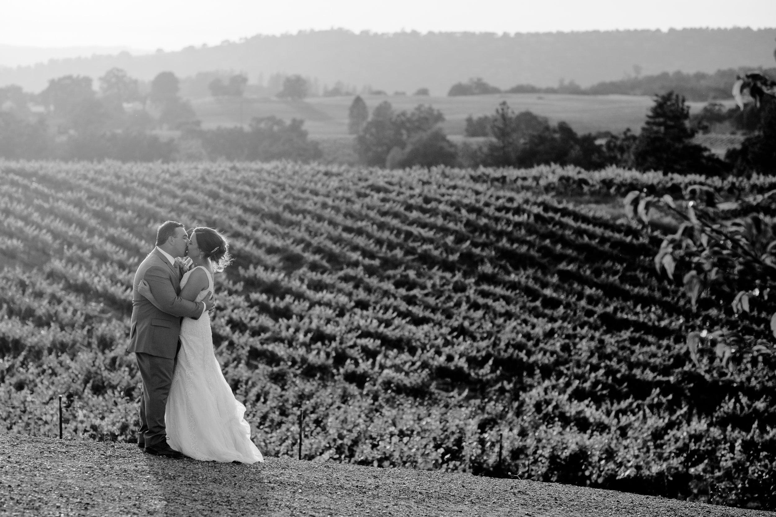 casey-sasha-027-helwig-winery-plymouth-wedding-photographer-katherine-nicole-photography.JPG