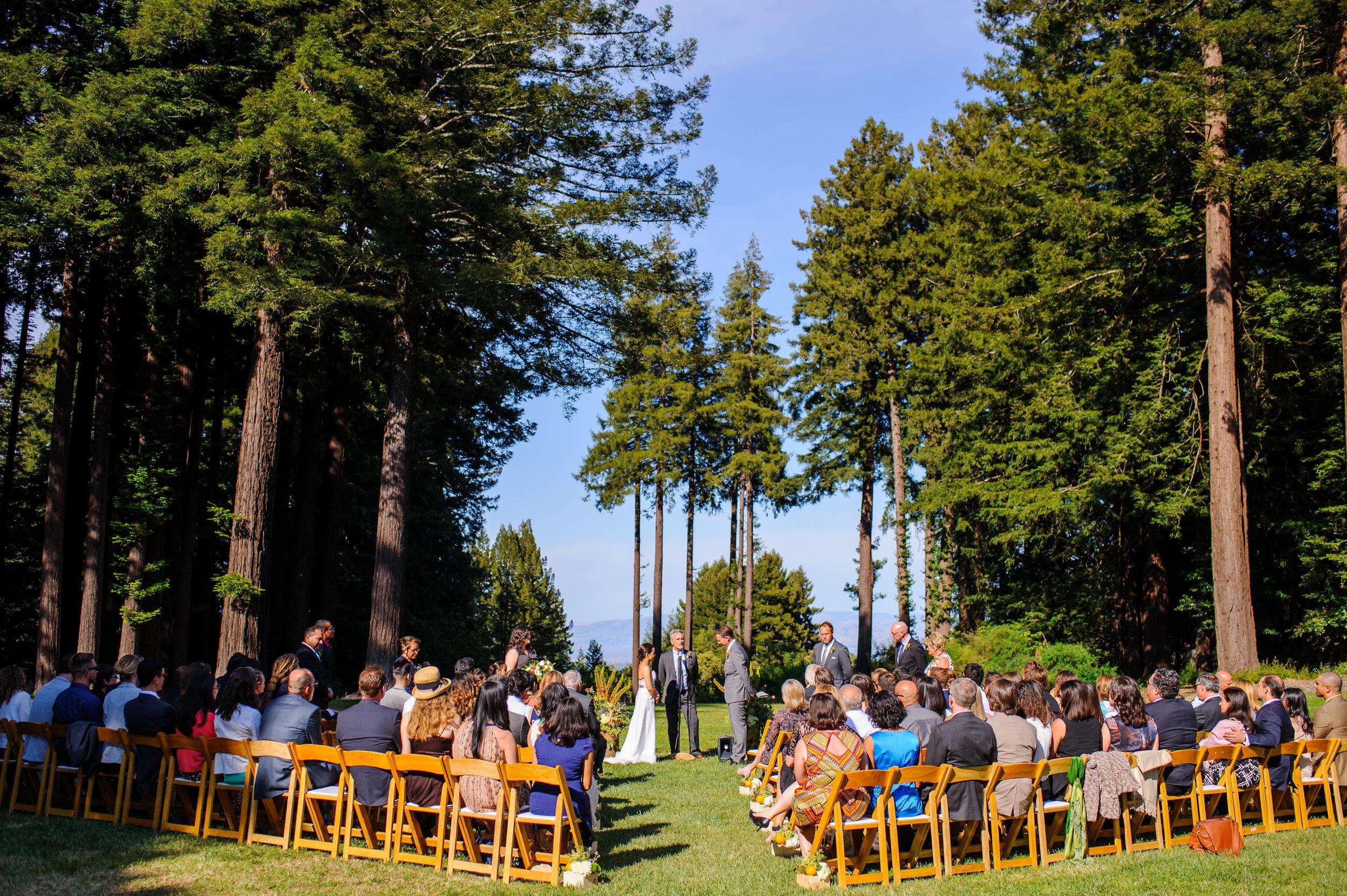 janet-jeremy-020-mountain-terrace-woodside-wedding-photographer-katherine-nicole-photography.JPG