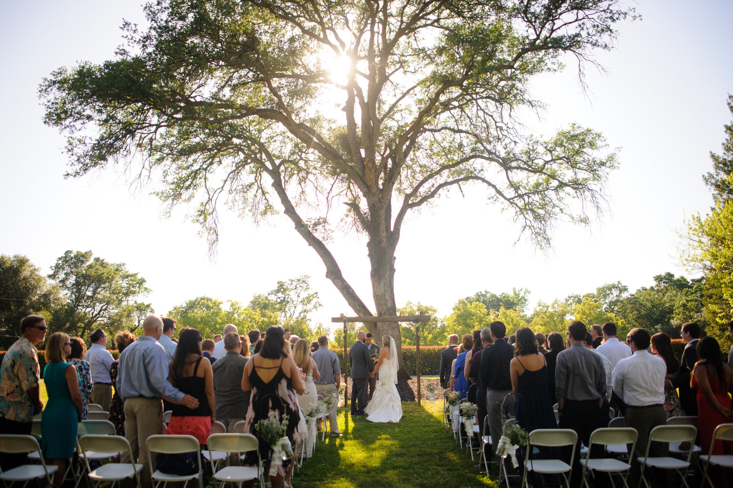 lindsey-alex-018-backyard-sacramento-wedding-photographer-katherine-nicole-photography.JPG