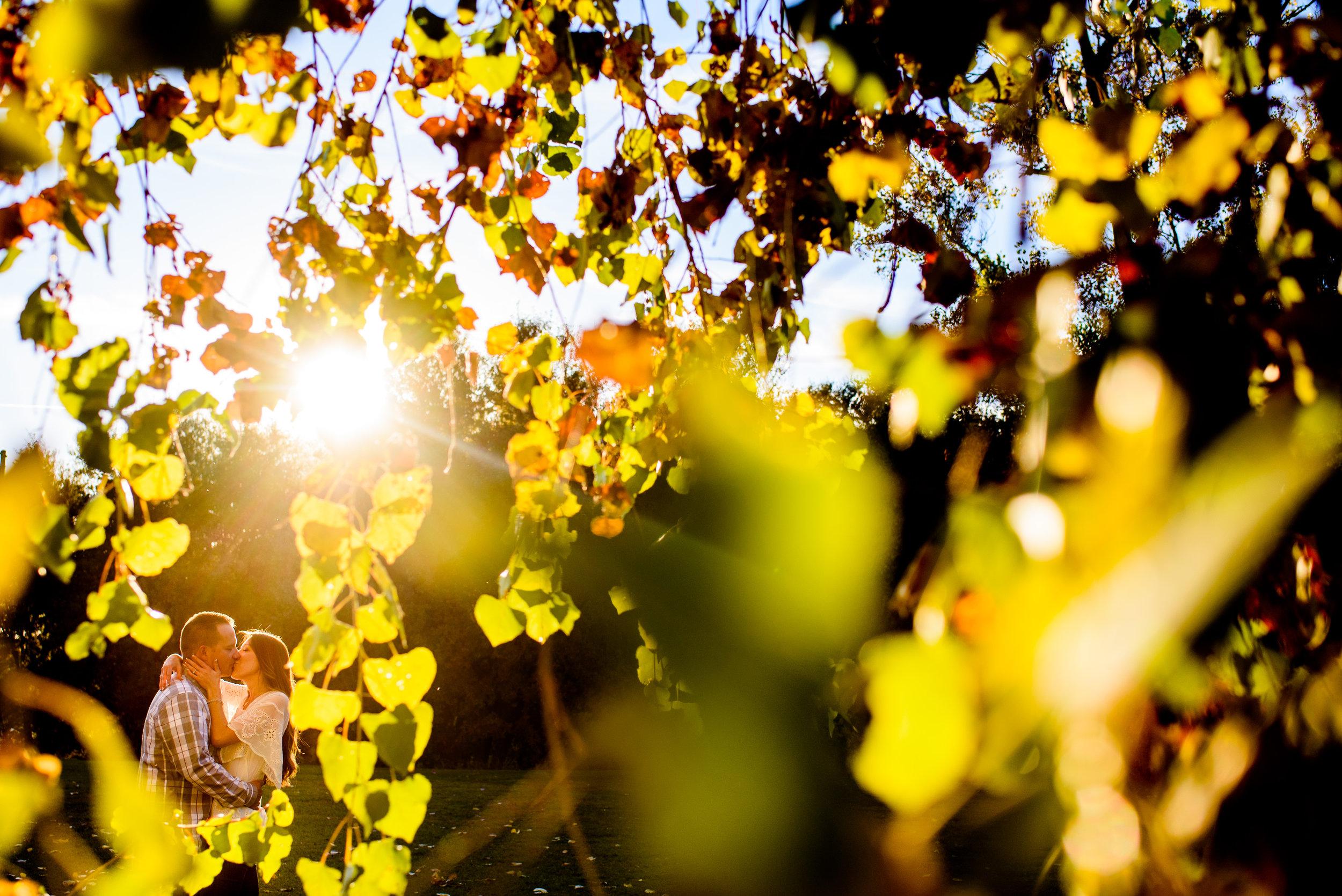 nicole-luke-005-sacramento-engagement-wedding-photographer-katherine-nicole-photography.JPG