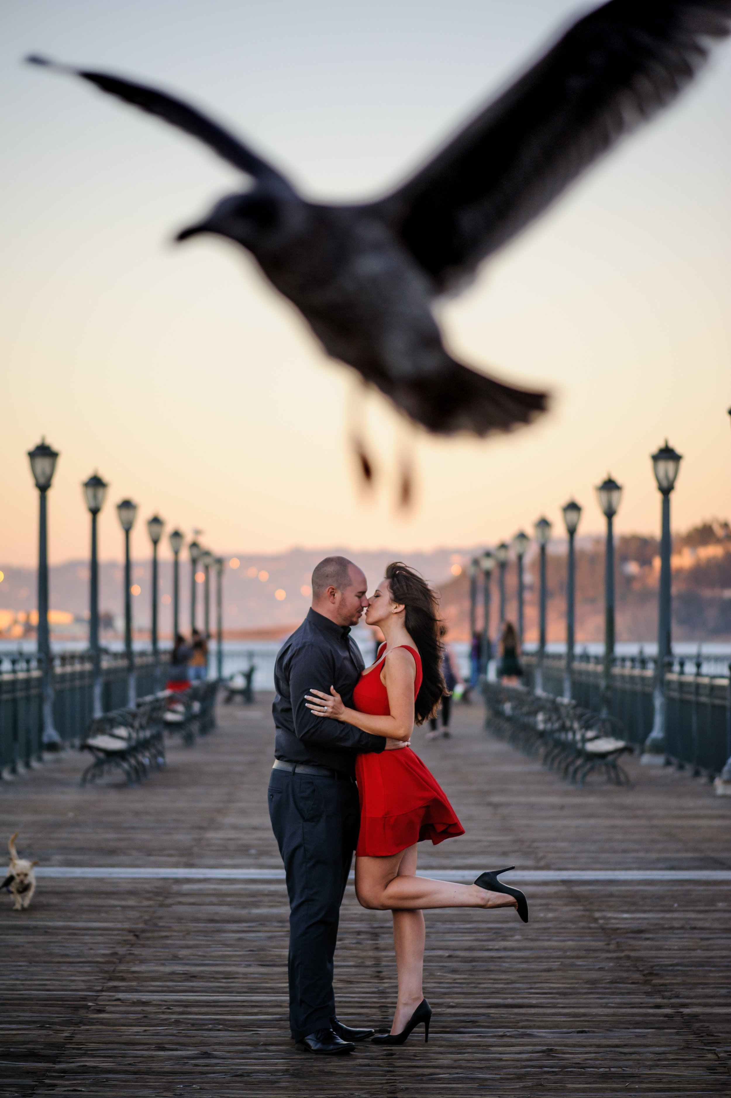 jenny-sean-016-san-francisco-giants-engagement-wedding-photographer-katherine-nicole-photography.JPG