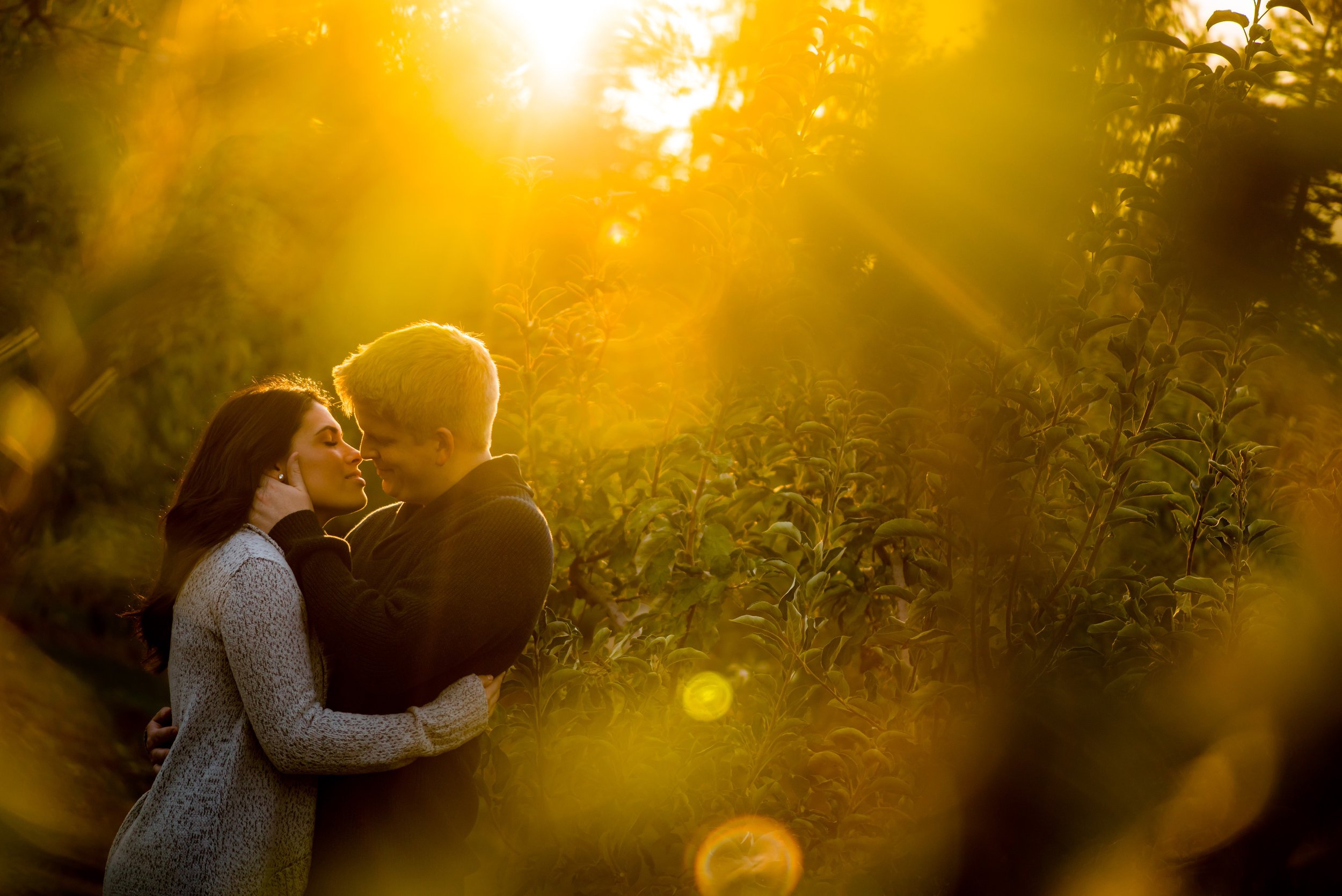 samantha-joel-001-apple-hill-engagement-photos-wedding-photographer-katherine-nicole-photography.JPG