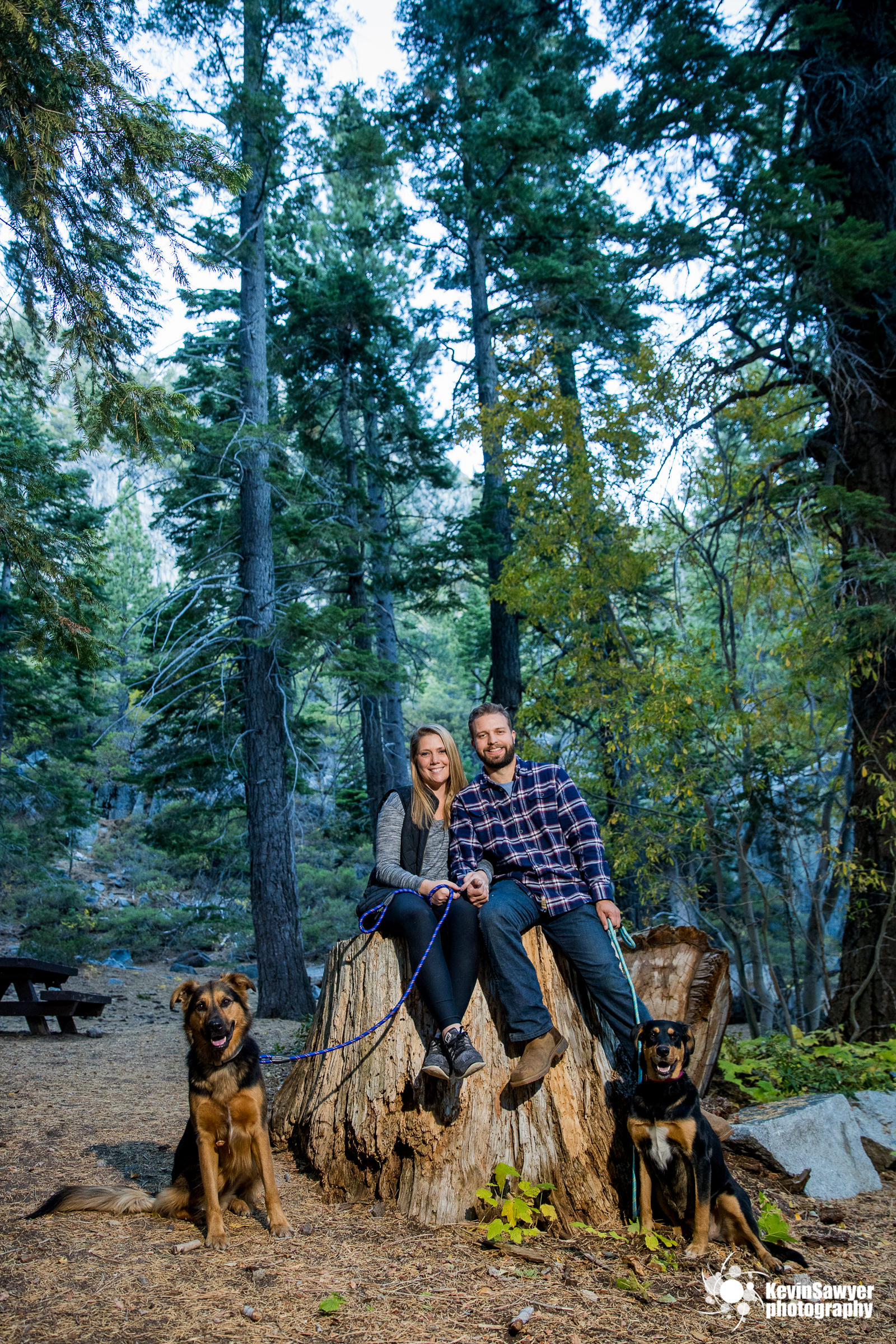 lake-tahoe-wedding-photographer-proposal-engagement-emerald-bay-portraits-love-southlake-tahoe