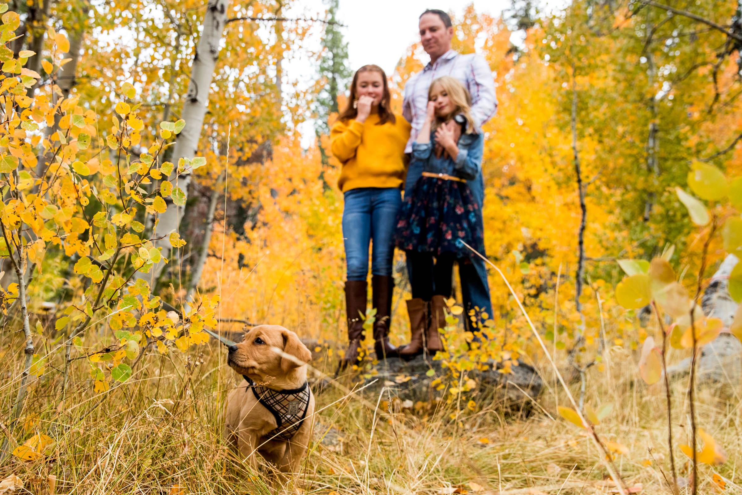 lake-tahoe-truckee-reno-carson-washoe-city-family-kid-portraits-photographer-photography
