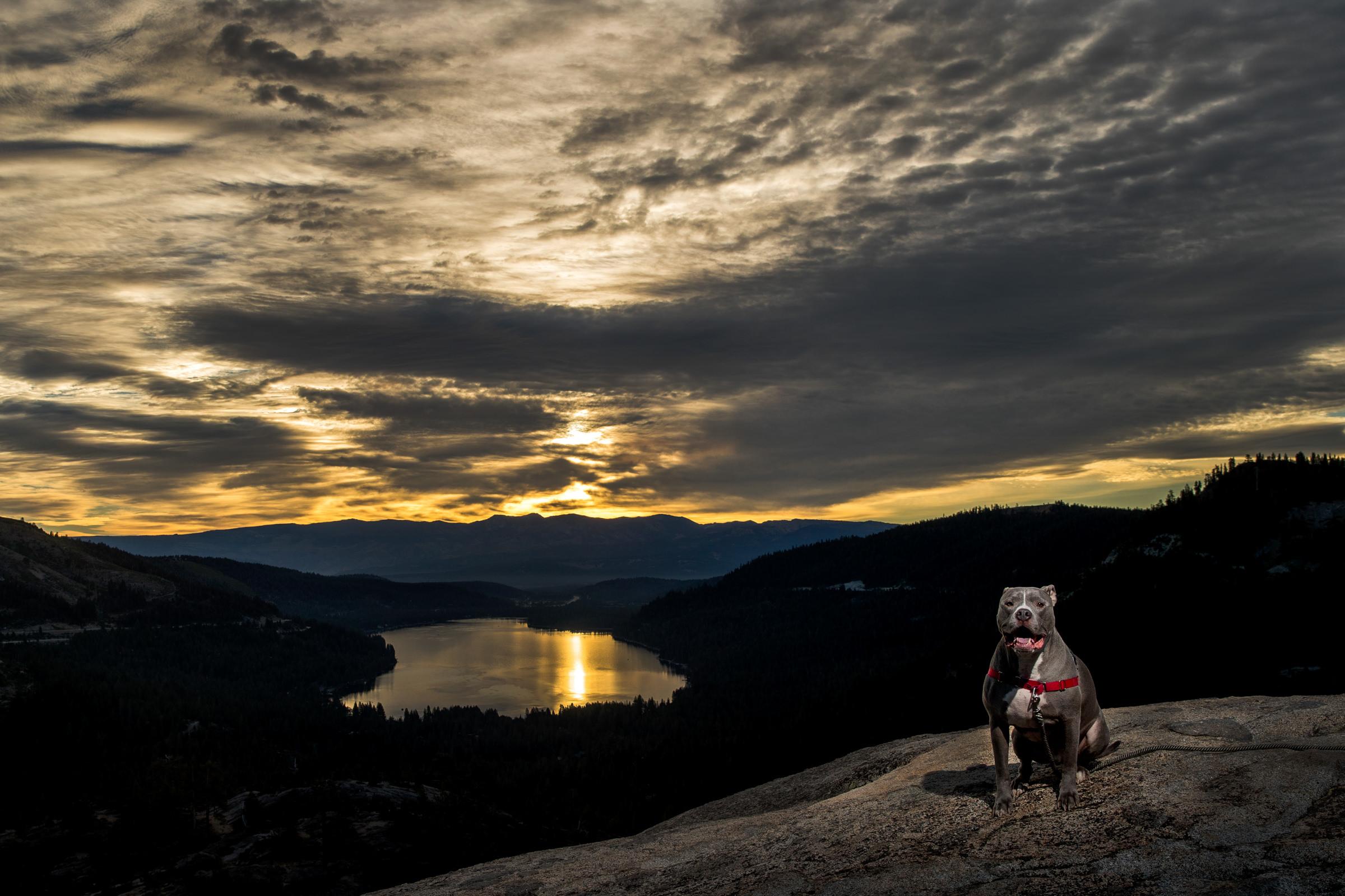 lake tahoe photographer